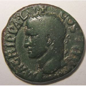 Photo numismatique Monnaies Empire Romain AGRIPPA (37-41) Dupondius