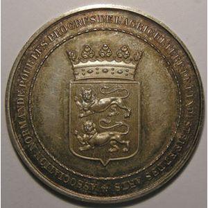 Photo numismatique Monnaies Jetons et médailles Médailles agricoles
