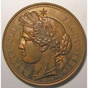 Médaille Hippique, Saône et Loire, Signé: Oudiné, diamètre: 50 mm, bronze