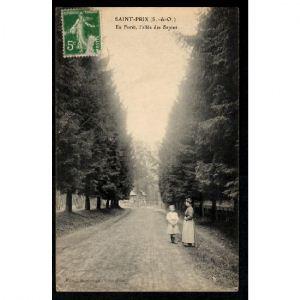 SAINT PRIX - En Forêt, l'Allée des Sapins